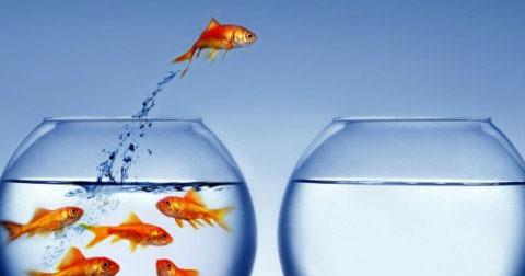 7 cách vô cùng đơn giản để bạn tạo nên sự khác biệt