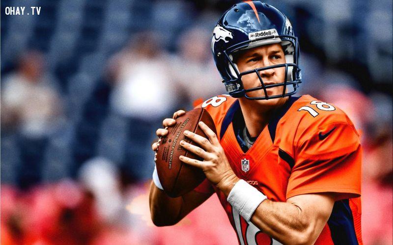 ảnh vđv kiếm nhiều tiền nhất,Peyton Manning,Phil Mickelson,Cristiano Ronaldo,vận động viên,người giàu