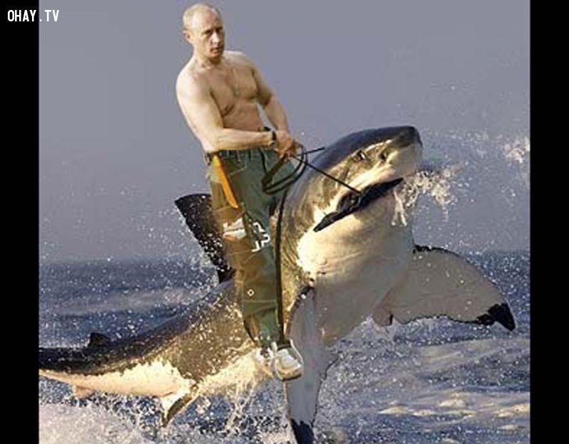 anh-che-Putin 15