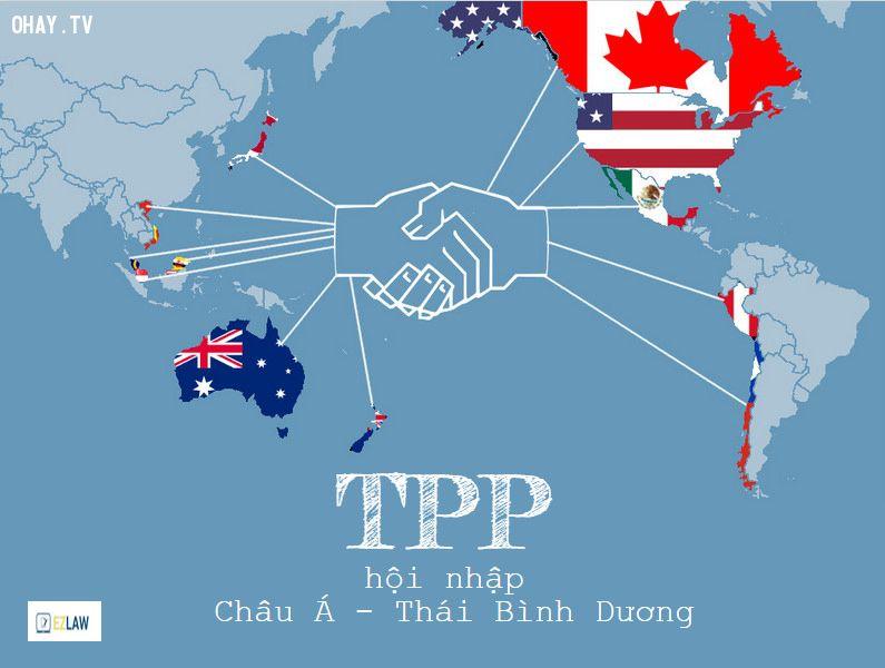 TPP là gì?