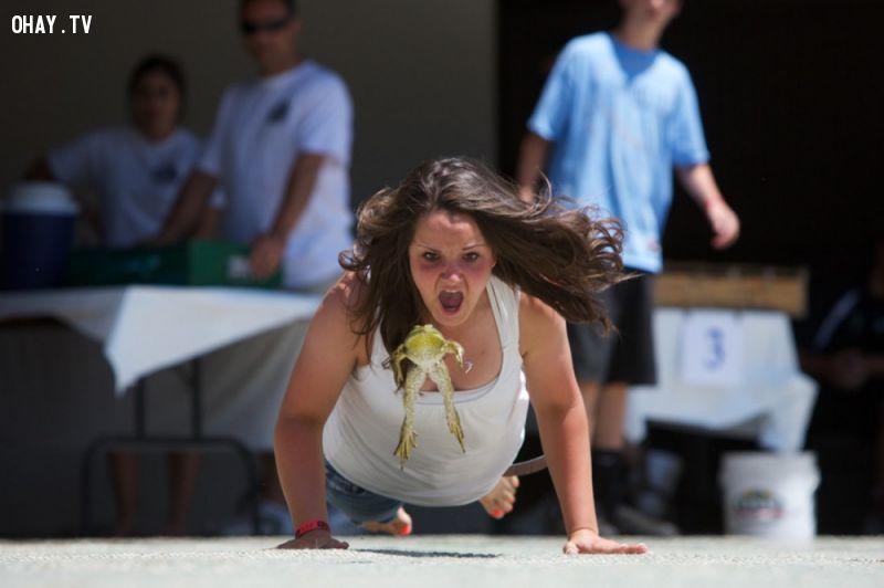 ảnh thể thao,đua ếch,đua đà điểu,đua xe ba bánh,nhà vệ sinh di động