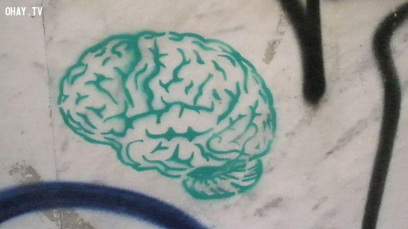 ảnh trí thông minh,não bộ,rèn luyện não bộ,rèn luyện trí não