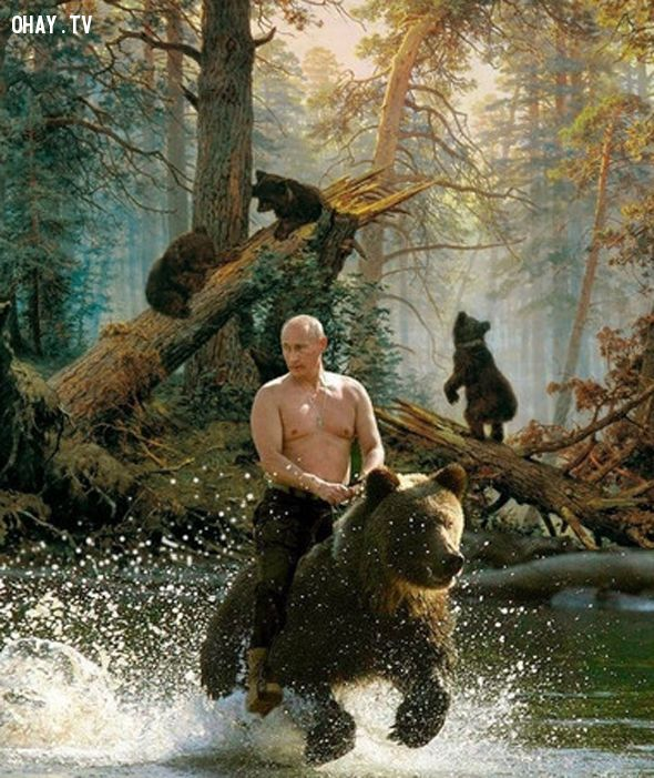 anh-che-Putin 1