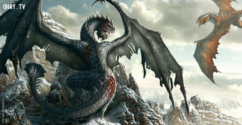Rồng, Dragon