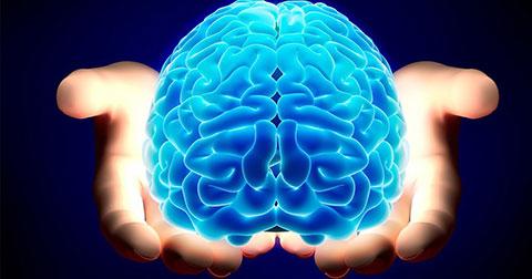 10 sự thật thú vị về bộ não của con người mà có thể bạn chưa biết
