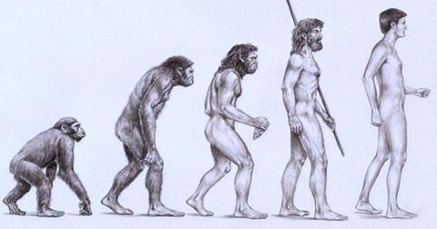 Những bí ẩn về sự tiến hóa của người nguyên thủy.