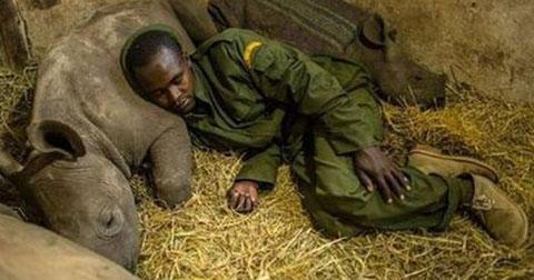 11 bức ảnh cảm động về tình thương con người dành cho động vật