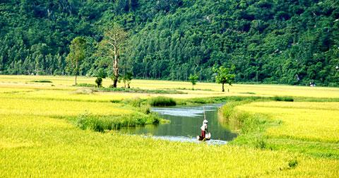 """Bộ ảnh tuyệt đẹp về Phú Yên - Xứ sở \""""Tôi thấy hoa vàng trên cỏ xanh\"""""""