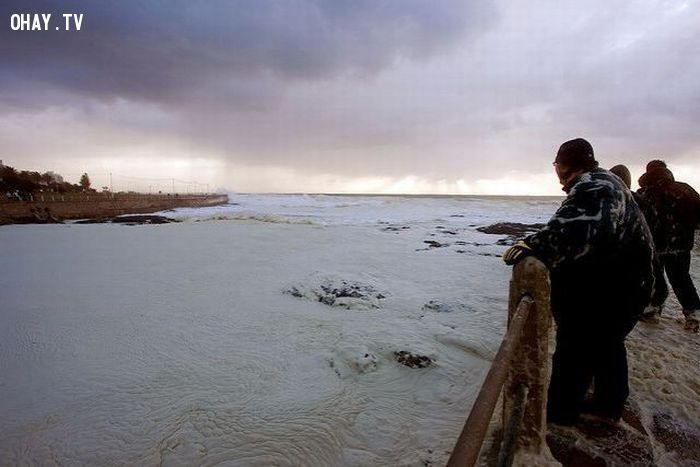 KỲ LẠ chùm ảnh bờ biển CAPPUCCINO đang chờ bạn KHÁM PHÁ