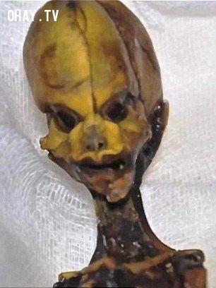 ảnh xác ướp tí hon,người ngoài hành tinh,xác ướp