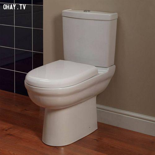 Những thói quen nguy hiểm bạn thường mắc phải khi vào nhà vệ sinh