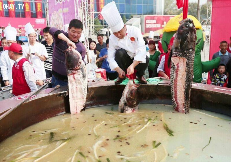 ảnh cá chép khổng lồ,trịnh châu,trung quốc,lễ hội ẩm thực,nồi canh khổng lồ,kỷ lục
