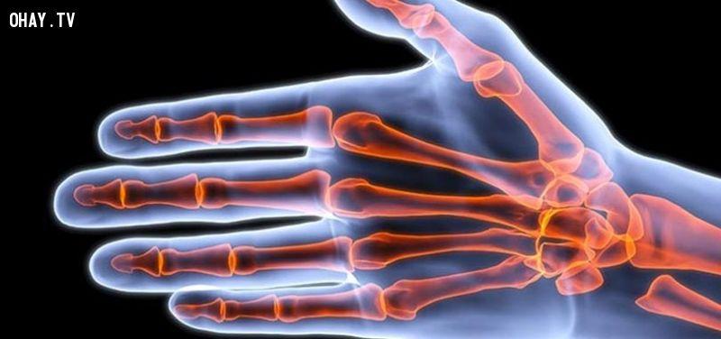 Các khớp ngón tay của bàn tay bạn