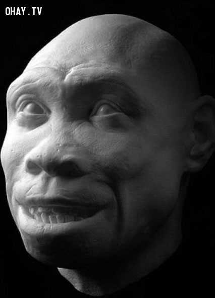ảnh hình dáng khuôn mặt,khuôn mặt,con người,con người cổ