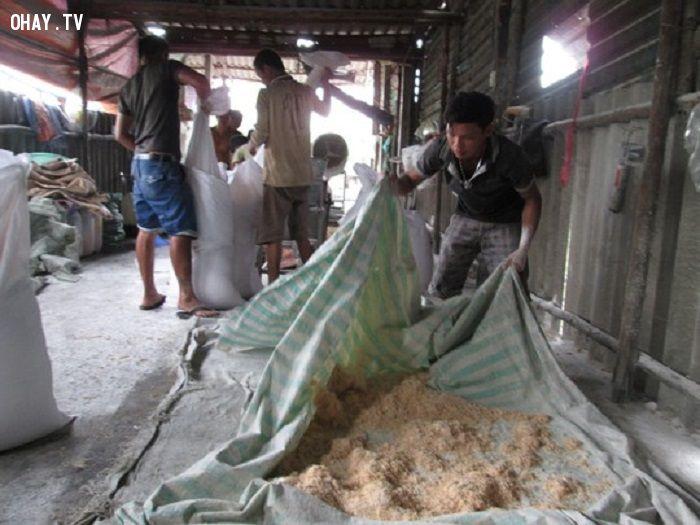 Chà bông đang được các cơ quan chức năng gom đem đi tiêu hủy - Ảnh: Dantri.com