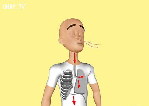 9 cách để giữ sự bình tĩnh khi căng thẳng, hoặc tức giận