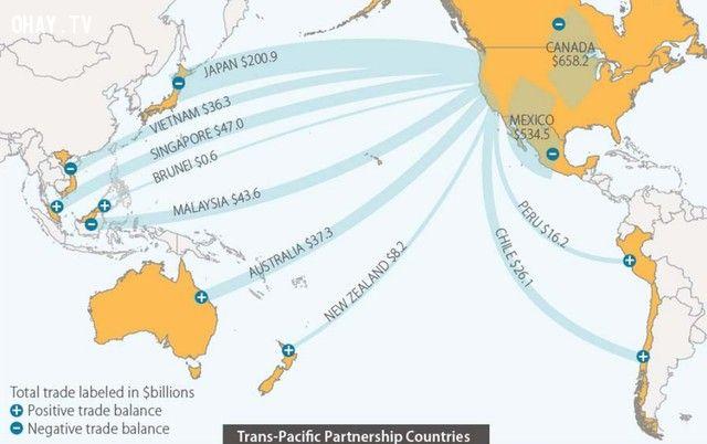 mục tiêu của TPP là gì