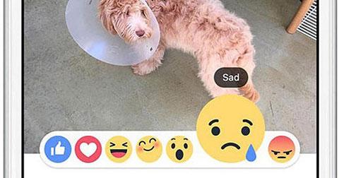 """Facebook thử nghiệm 6 biểu tượng cảm xúc để thay thế nút """"Dislike"""""""