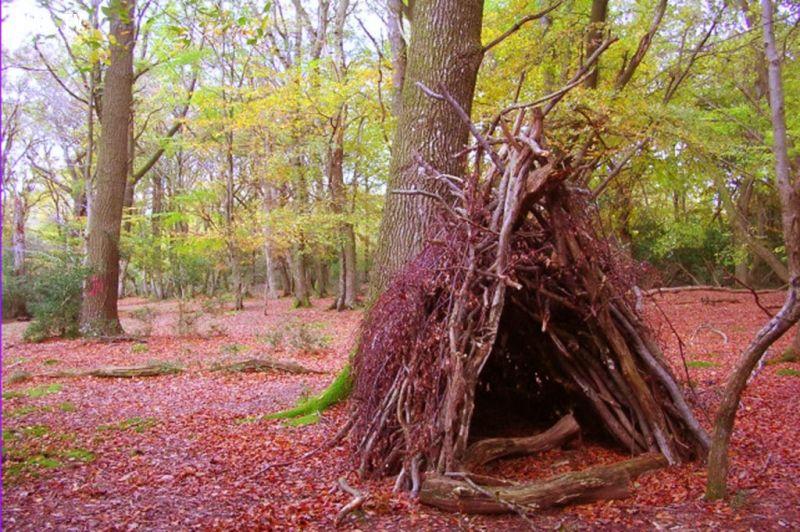 ảnh kỹ năng sinh tồn,lạc trong rừng