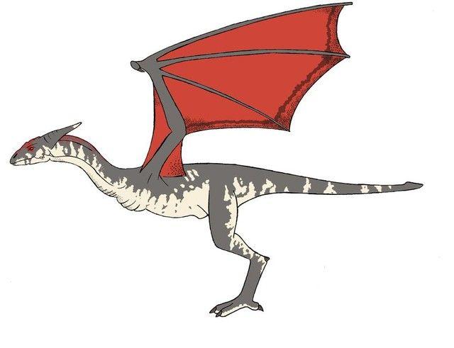 Rồng, dragon, real dragon