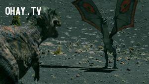 real dragon, Rồng có từ khi nào, nguồn gốc của rồng, rồng có thực