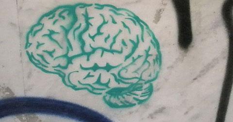 7 sở thích khoa học đã chứng minh rằng sẽ giúp bạn thông minh hơn
