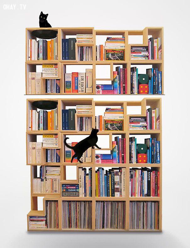 Tủ sách cho những người yêu mèo
