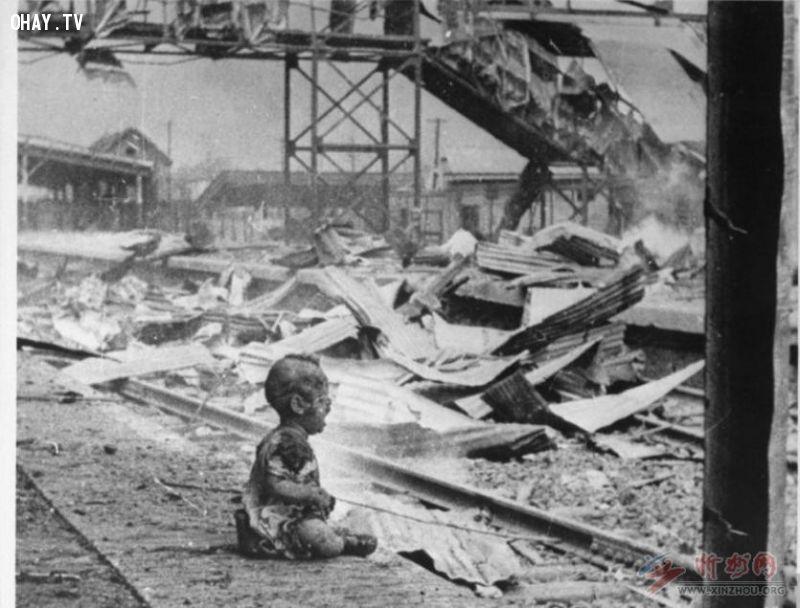 ảnh bức ảnh lịch sử,suy ngẫm