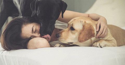 Đàn ông không có nhưng Chó nhất định phải nuôi!