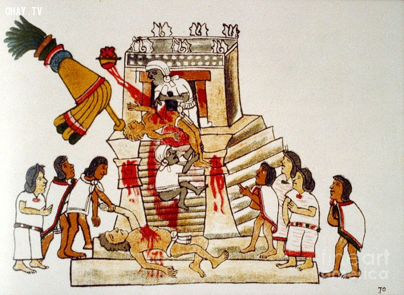 Người Aztec moi tim hiến tế