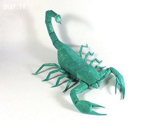 Bọ cạp xanh Origami