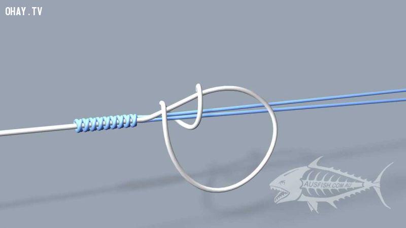 ảnh buộc dây câu,thắt dây câu,câu cá