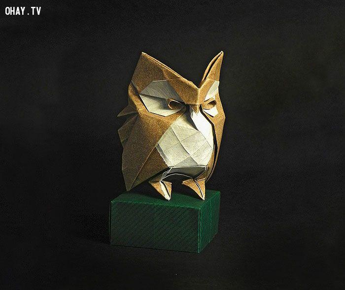 Cú mèo Origami