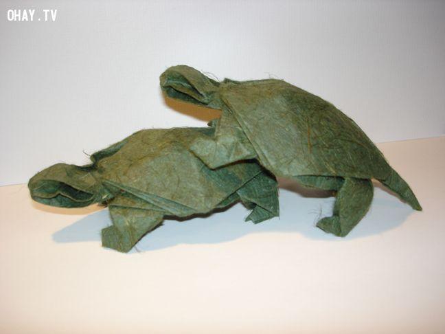 2 con rùa Origami