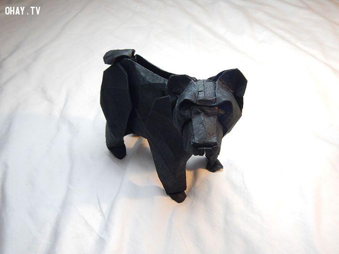 Gấu đen Origami