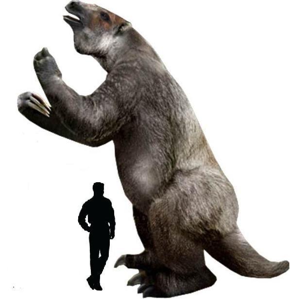 con lười khổng lồ Megatherium