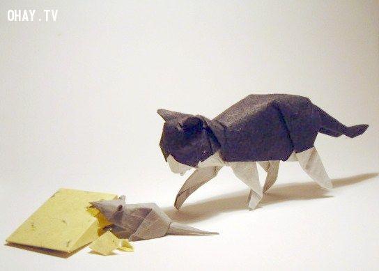 Mèo chuột và phomat Origami