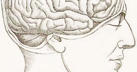 7 mẹo ghi nhớ giúp chúng ta trở nên thông minh hơn