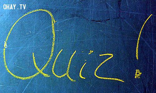 Quiz !!!