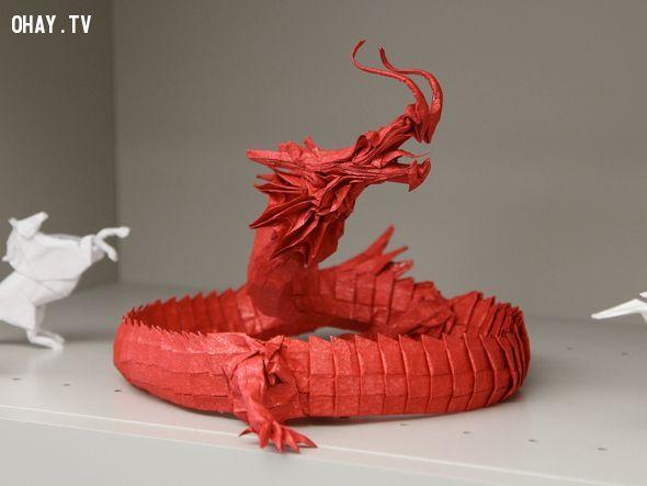 ảnh Origami,gấp giấy,sáng tạo