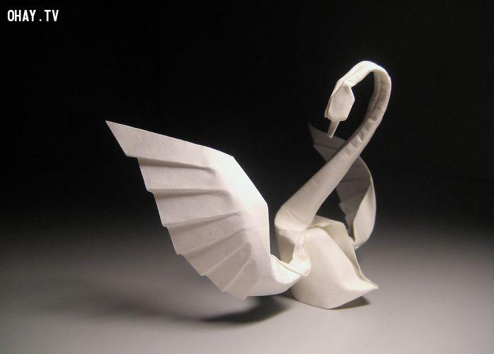 Thiên nga trắng Origami