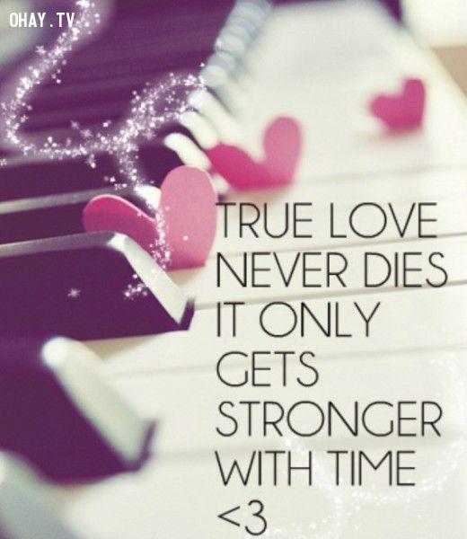 ảnh tình yêu thật sự,chiếm hữu,tình yêu,sự khác biệt