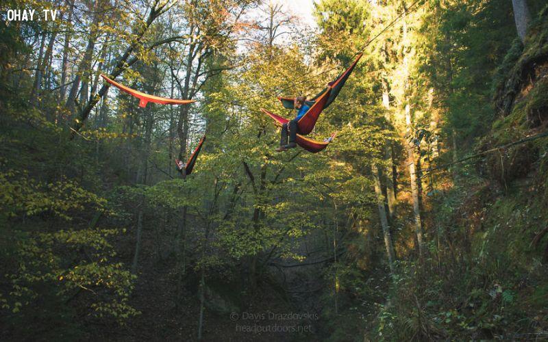ảnh mùa thu,mắc võng trên cây,tận hưởng cuộc sống