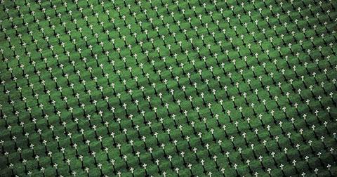 39 Bức ảnh chụp từ không trung khiến bạn phải kinh ngạc - P1