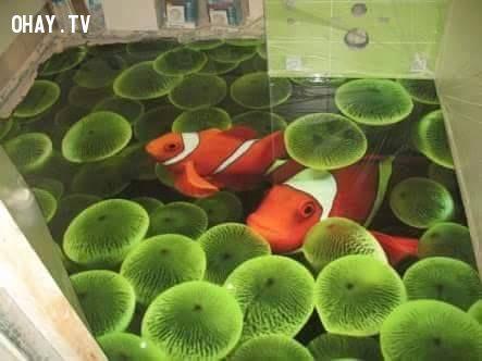 Tìm thấy Nemo...dưới nền nhà
