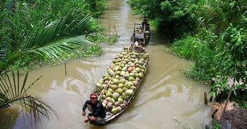 Tại sao xứ dừa lại có tên gọi là Bến Tre mà không phải là Bến Dừa?