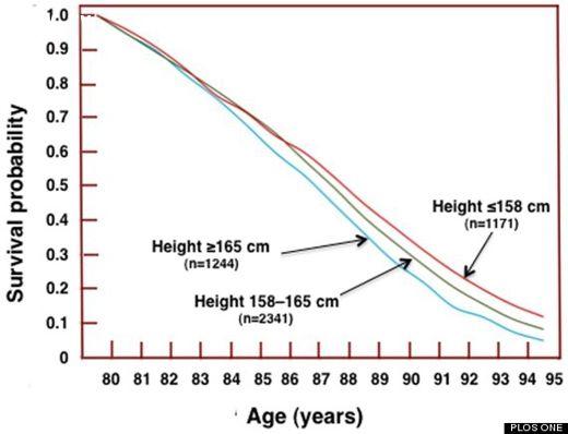 Biểu đồ chiều cao và tuổi thọ càng lùn càng sống lâu