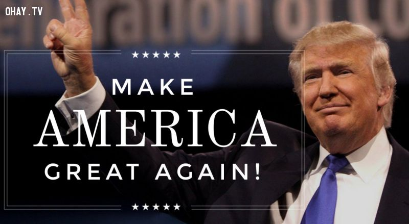 Donald Trump make America great again !