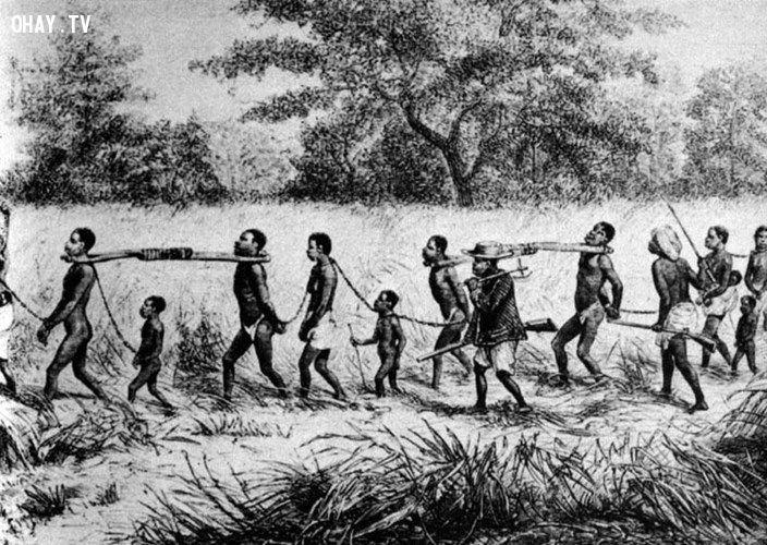 ảnh chế độ nô lệ,nạn buôn bán người,có thể bạn chưa biết,fact