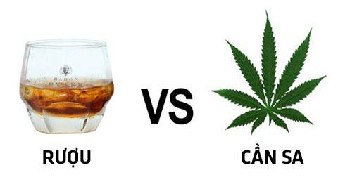 Vì sao cần sa bị cấm còn rượu thì không?